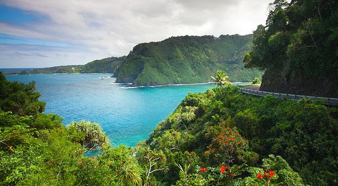 The Beautiful Island of Maui take A Step to Change The World